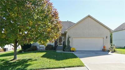 Raymore MO Single Family Home For Sale: $239,900