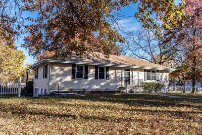 Tonganoxie Single Family Home For Sale: 229 Grace Street