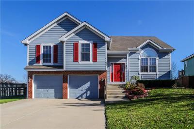 Lansing Single Family Home For Sale: 901 Allyssa Court
