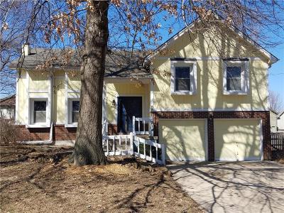 Lee's Summit Single Family Home For Sale: 514 NE Deerfield Circle