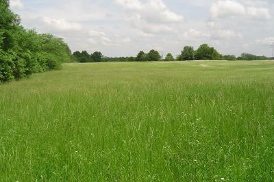 Harrisonville Residential Lots & Land For Sale: Ha-L4 E Twin Pines Drive