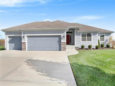 Clay County Single Family Home For Sale: 1518 NE 107th Terrace