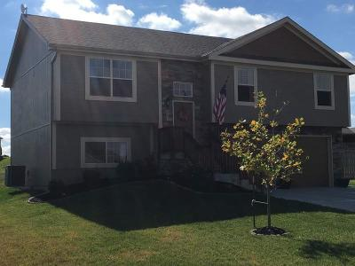 Smithville Single Family Home For Sale: 103 Creek Valley Terrace