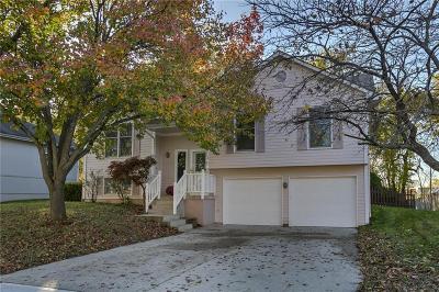 Lee's Summit Single Family Home For Sale: 924 NE Bristol Drive