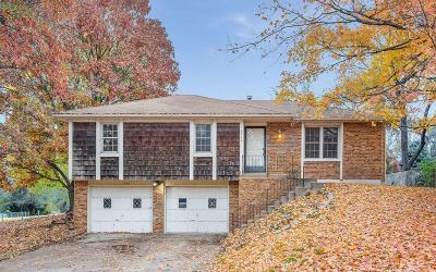 Kansas City Single Family Home For Sale: 9712 Hurrelbrink Road