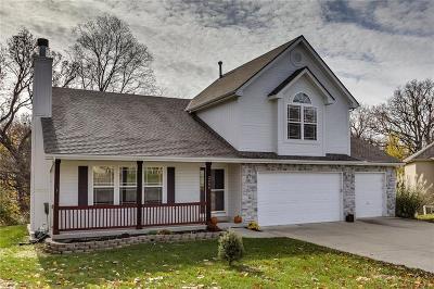 Kearney Single Family Home For Sale: 2406 Summit Trail