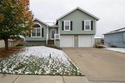Kearney Single Family Home For Sale: 1504 Clear Creek Drive
