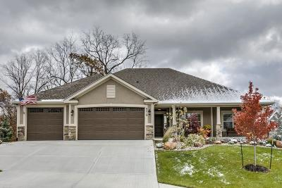 Kansas City Single Family Home For Sale: 9219 N Overton Avenue