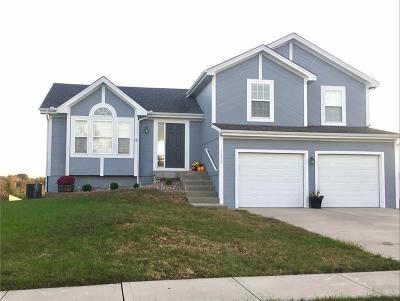 Kansas City Single Family Home For Sale: 11319 N Bristol Avenue