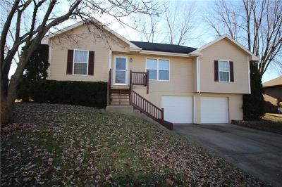 Kearney Single Family Home For Sale: 805 E 15th Street