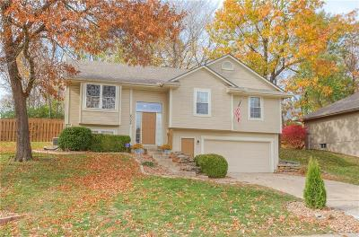Raytown Single Family Home For Sale: 8304 Woodson Drive