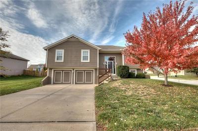 Kansas City Single Family Home For Sale: 10622 N Marsh Avenue