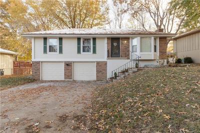 Blue Springs Single Family Home For Sale: 508 NE Johnston Drive