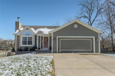 Kansas City Single Family Home For Sale: 11915 N Holmes Court