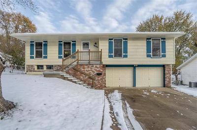 Kansas City Single Family Home For Sale: 11607 Delmar Drive