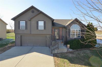Kansas City Single Family Home For Sale: 11320 N Ewing Avenue
