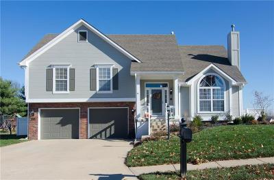 Buchanan County Single Family Home For Sale: 6205 Greenway Court