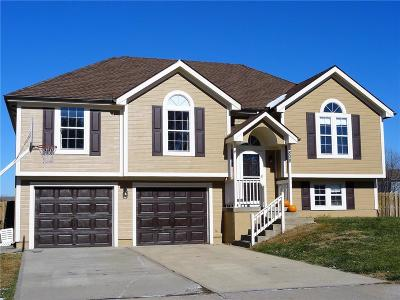 Cass County Single Family Home For Sale: 808 Winesap Circle