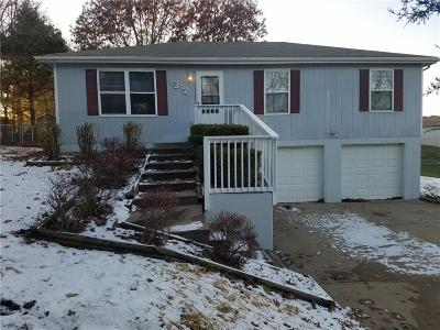 Excelsior Springs MO Single Family Home For Sale: $150,000