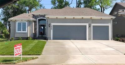 Olathe Single Family Home For Sale: 17070 W 163rd Terrace