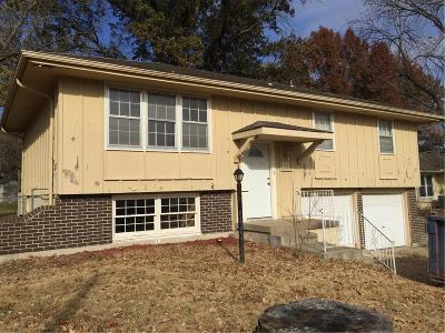 Lee's Summit Single Family Home For Sale: 702 NE Ash Street