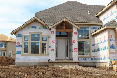 Johnson-KS County Single Family Home For Sale: 15600 Alhambra Street