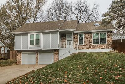 Lee's Summit Single Family Home For Sale: 3588 NE Chapel Drive