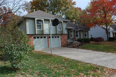 Overland Park Single Family Home For Sale: 9975 Cody Street