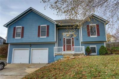 Smithville Single Family Home For Sale: 14612 Killarney Lane