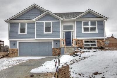Kearney Single Family Home For Sale: 1811 Lauren Lane