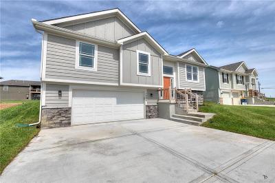 Kearney Single Family Home For Sale: 1606 Chestnut Street
