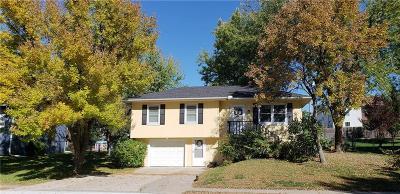 Harrisonville Single Family Home For Sale: 1706 Delmar Street