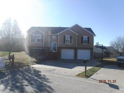 Tonganoxie Single Family Home For Sale: 2704 E Hickory Court