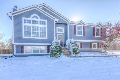 Greenwood Single Family Home For Sale: 1007 Tabitha Lane