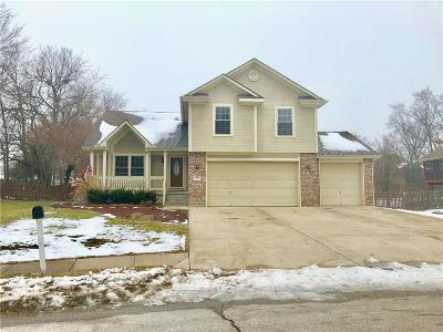 Cass County Single Family Home For Sale: 1701 Winchester Drive