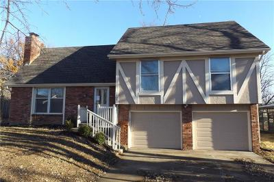 Kearney Single Family Home For Sale: 1403 Robin Street