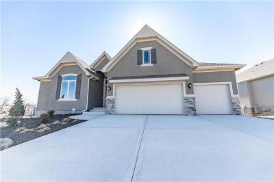 Lenexa Single Family Home For Sale: 8751 Houston Street