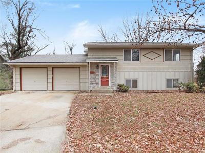 Cass County Single Family Home For Sale: 1804 Bird Terrace