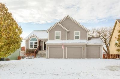 Smithville Single Family Home For Sale: 423 Killarney Lane