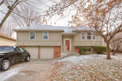Kansas City Single Family Home For Sale: 925 NE 108th Terrace