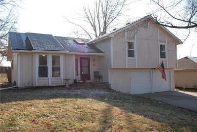 Lansing Single Family Home For Sale: 408 Hithergreen Drive