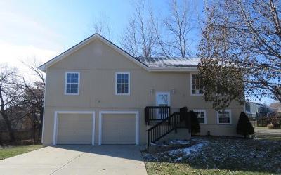 Kansas City Single Family Home For Sale: 8953 Ann Avenue