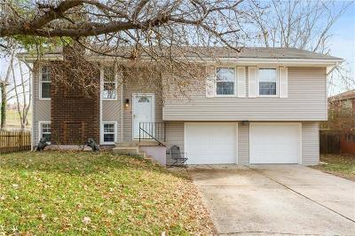 Blue Springs Single Family Home For Sale: 308 NE Lakeview Drive