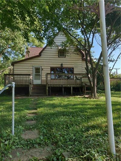 Henry County Single Family Home For Sale: 407 W 5th Street