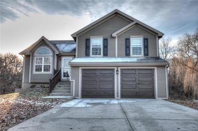 Kansas City MO Single Family Home For Sale: $211,050