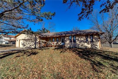 Spring Hill Single Family Home For Sale: 102 E Cedar Street
