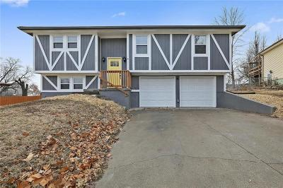 Leavenworth County Single Family Home For Sale: 209 Pawnee Lane