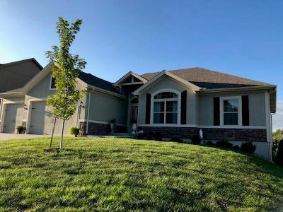 Kansas City Single Family Home For Sale: 3700 NE 79th Terrace