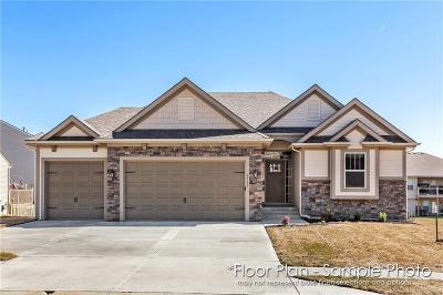 Kansas City Single Family Home For Sale: 10564 N Randolph Avenue