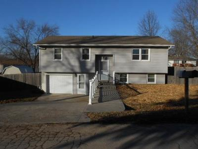 Lawson Single Family Home For Sale: 328 Ridge Drive